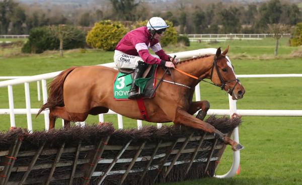 Navan Races