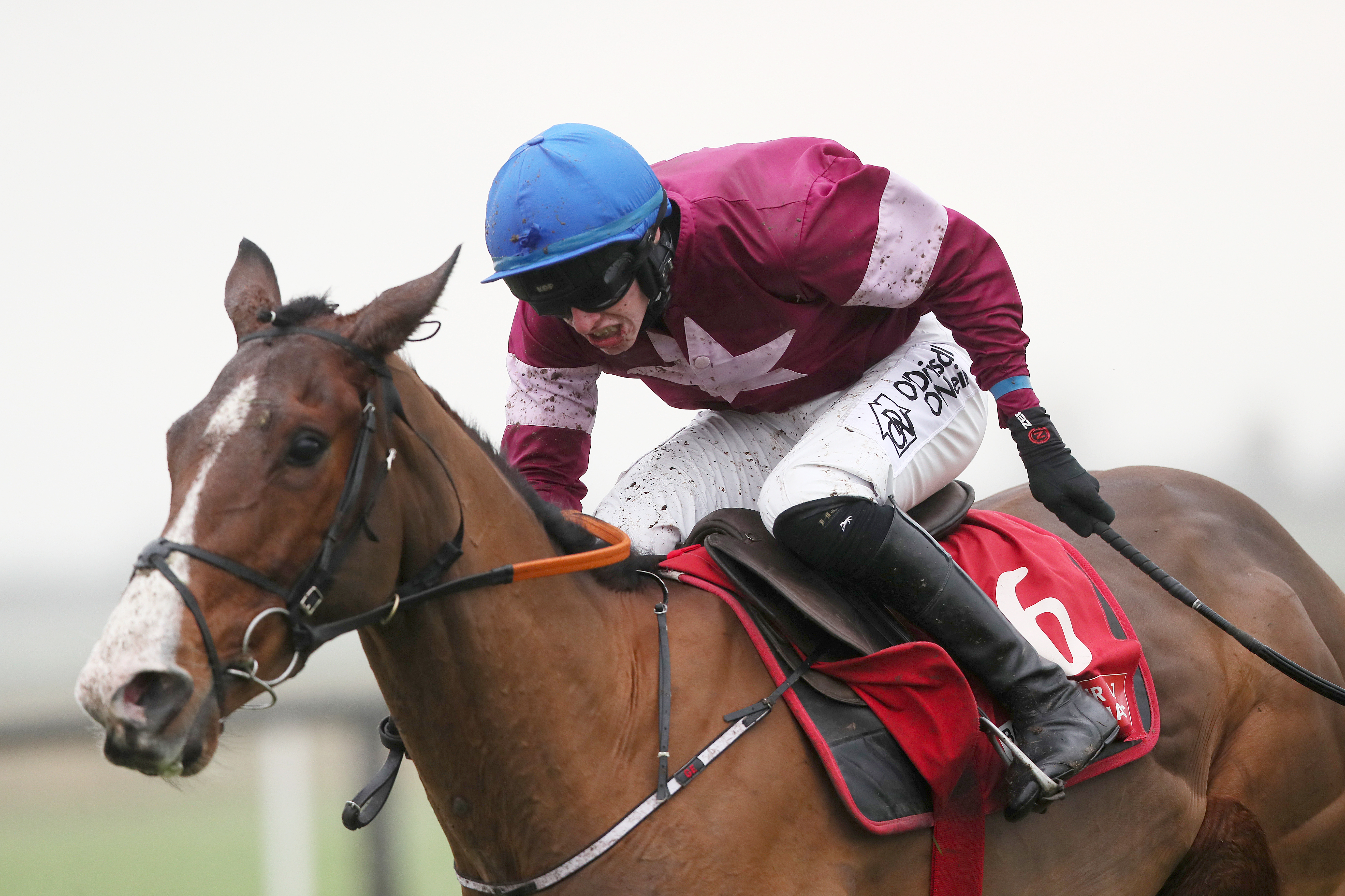 Mengli Khan is one of two Elliott-trained contenders in the Ryanair Gold Cup