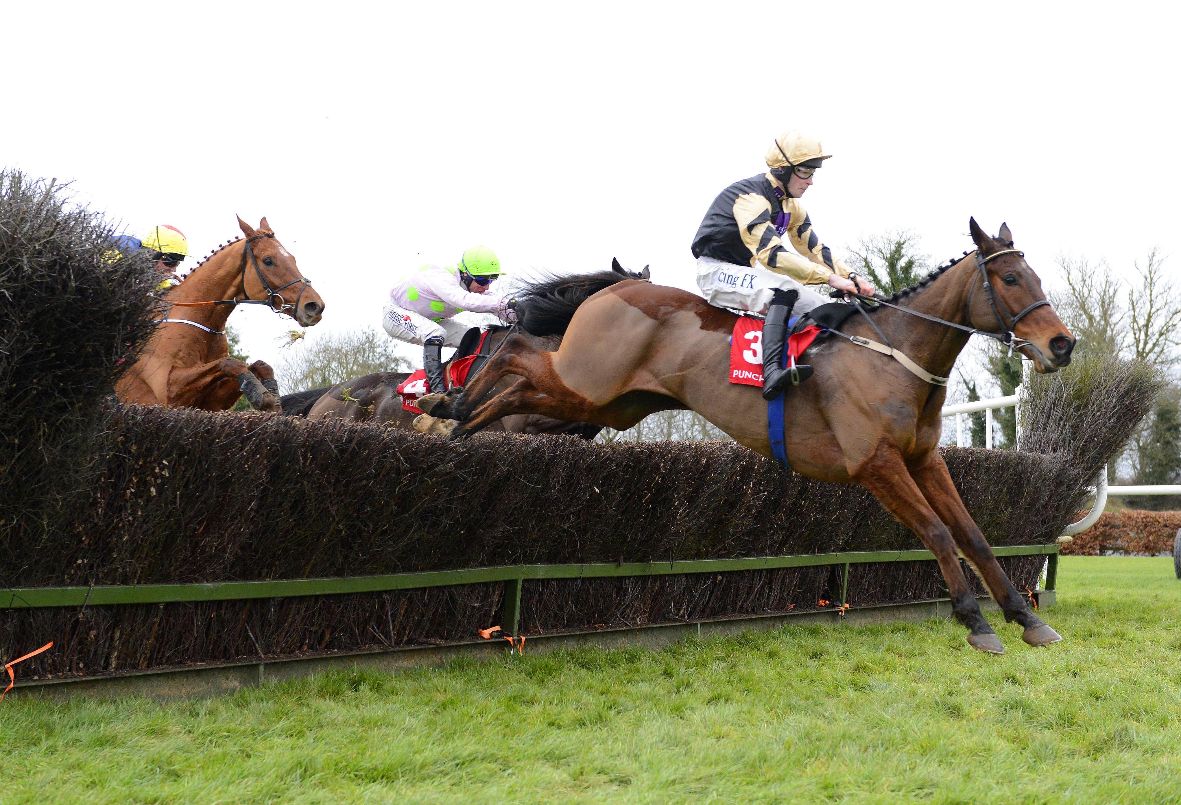 Jlt preview invitation only out go deliver mullins fourth straight win invitation only stopboris Choice Image