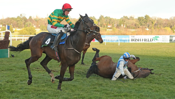 Dublin Racing Festival - Day Two - Leopardstown Races