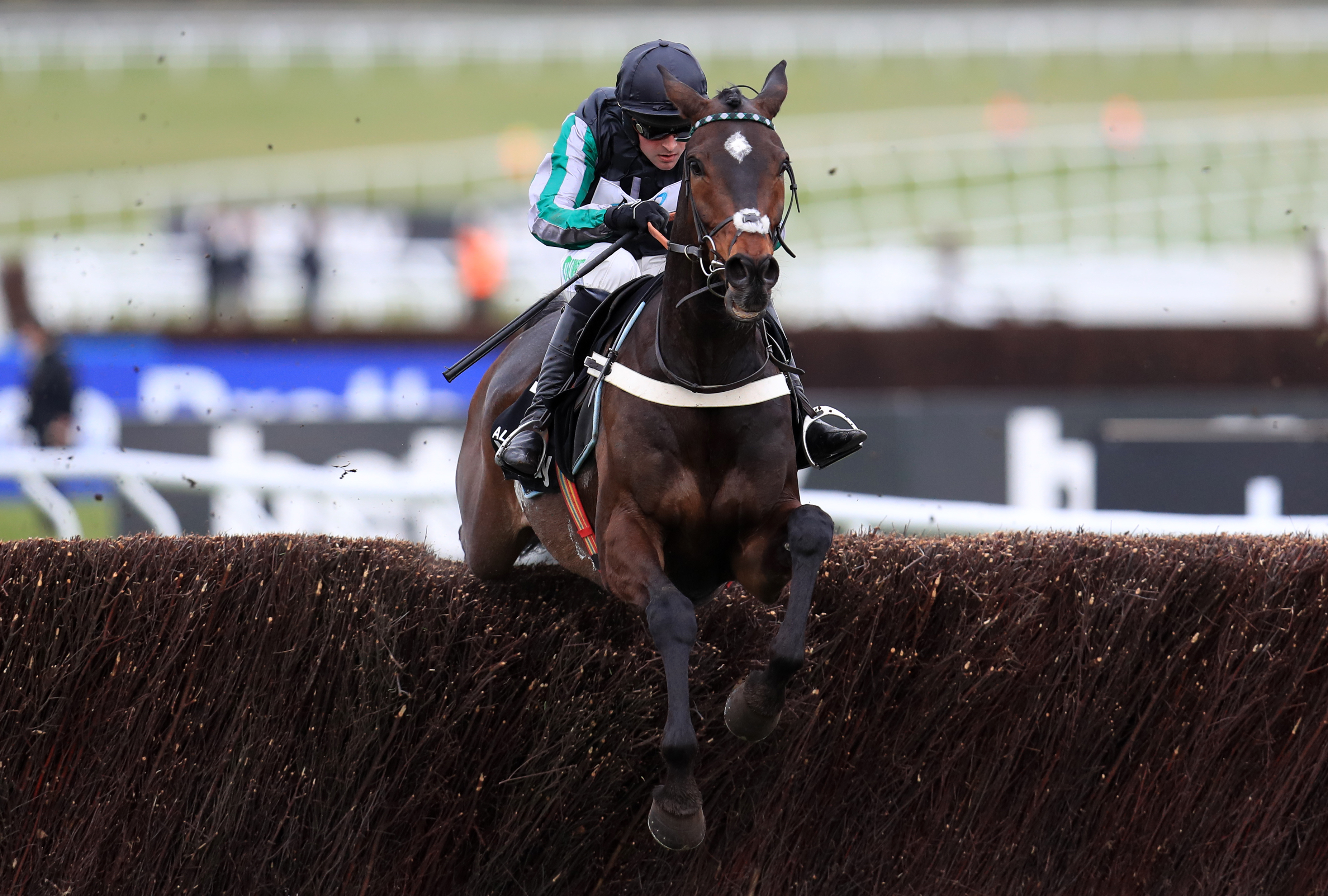 Altior and Flyingbolt have plenty in common