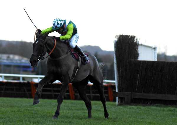 Horse Racing - Hennessy Cognac Gold Cup Day - Newbury Racecourse