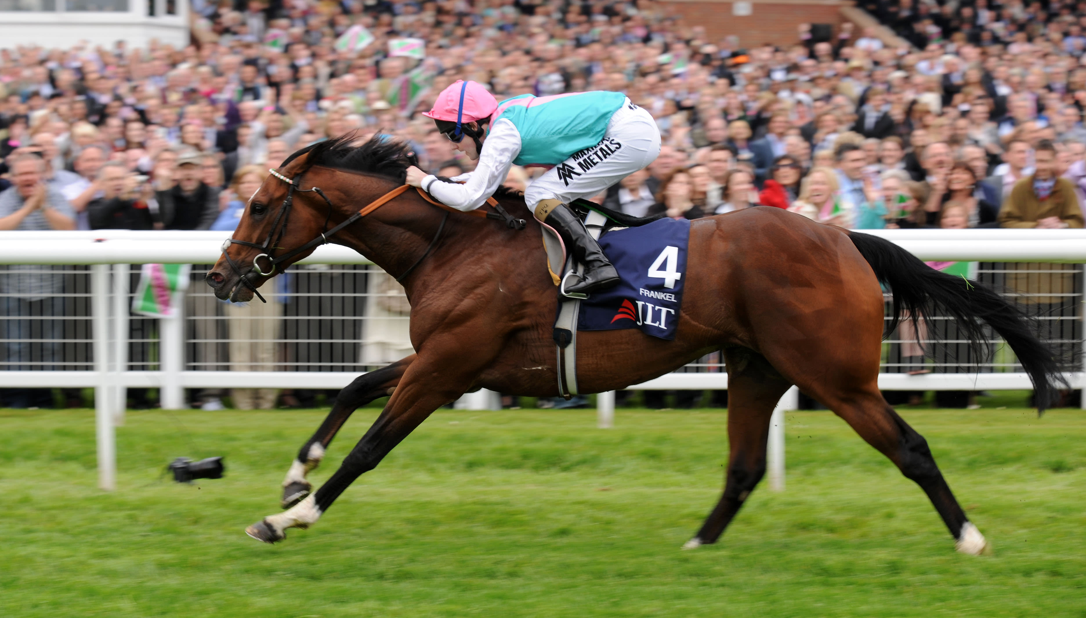 Frankel had a raking stride (Racingfotos)