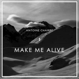 Antoine Chambe - Make Me Alive (Karlk Remix)