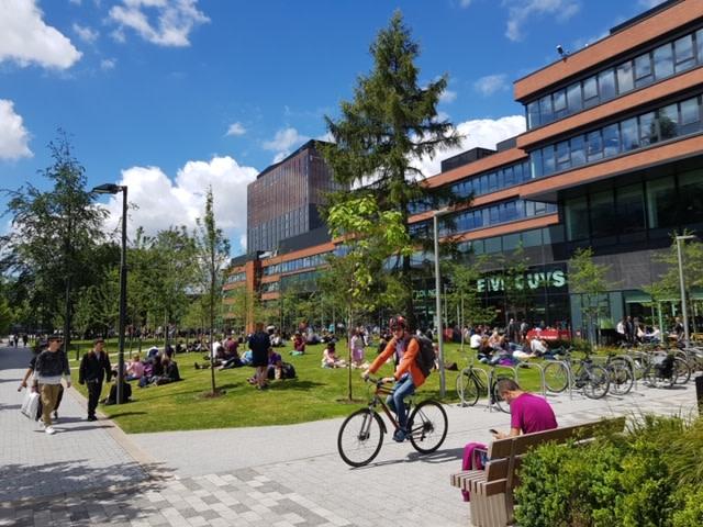Cyclist at University Green