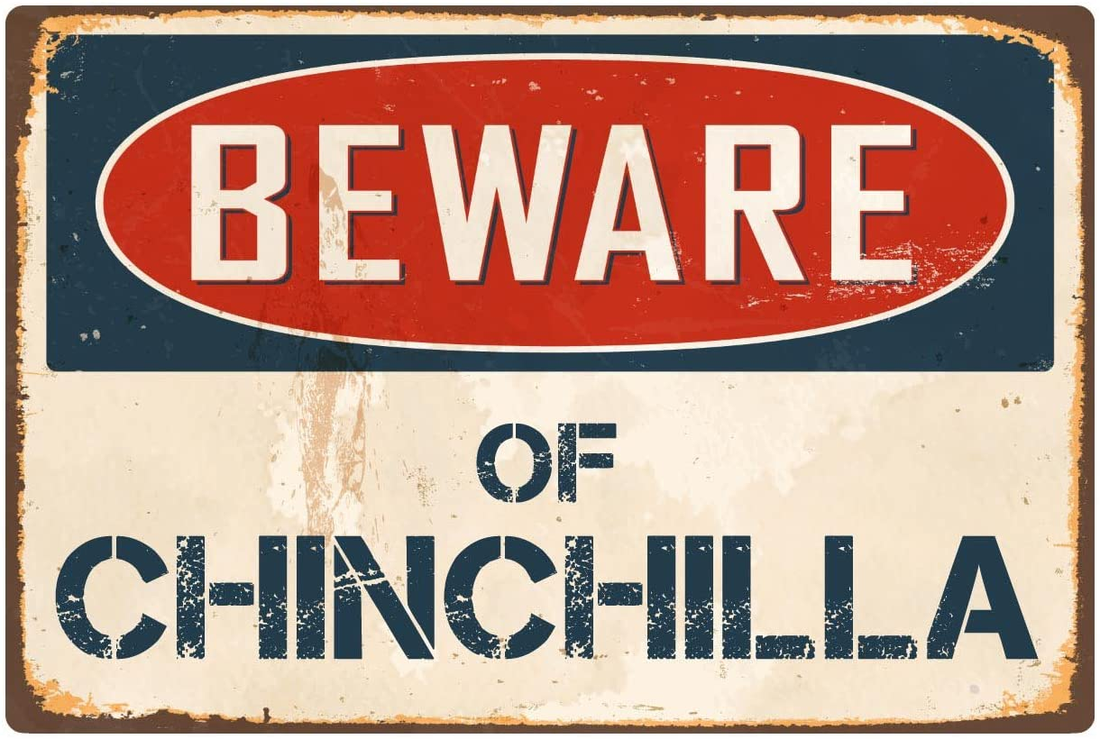 Beware of Chinchilla