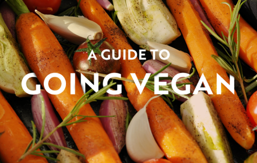 The Ecotricity guide to going vegan - Image 1