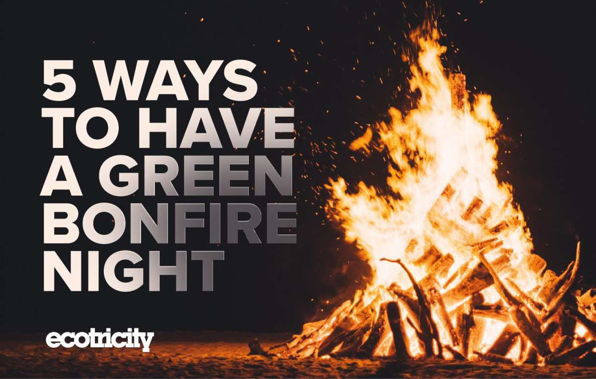 5 ways to have a green Bonfire Night - Image 1