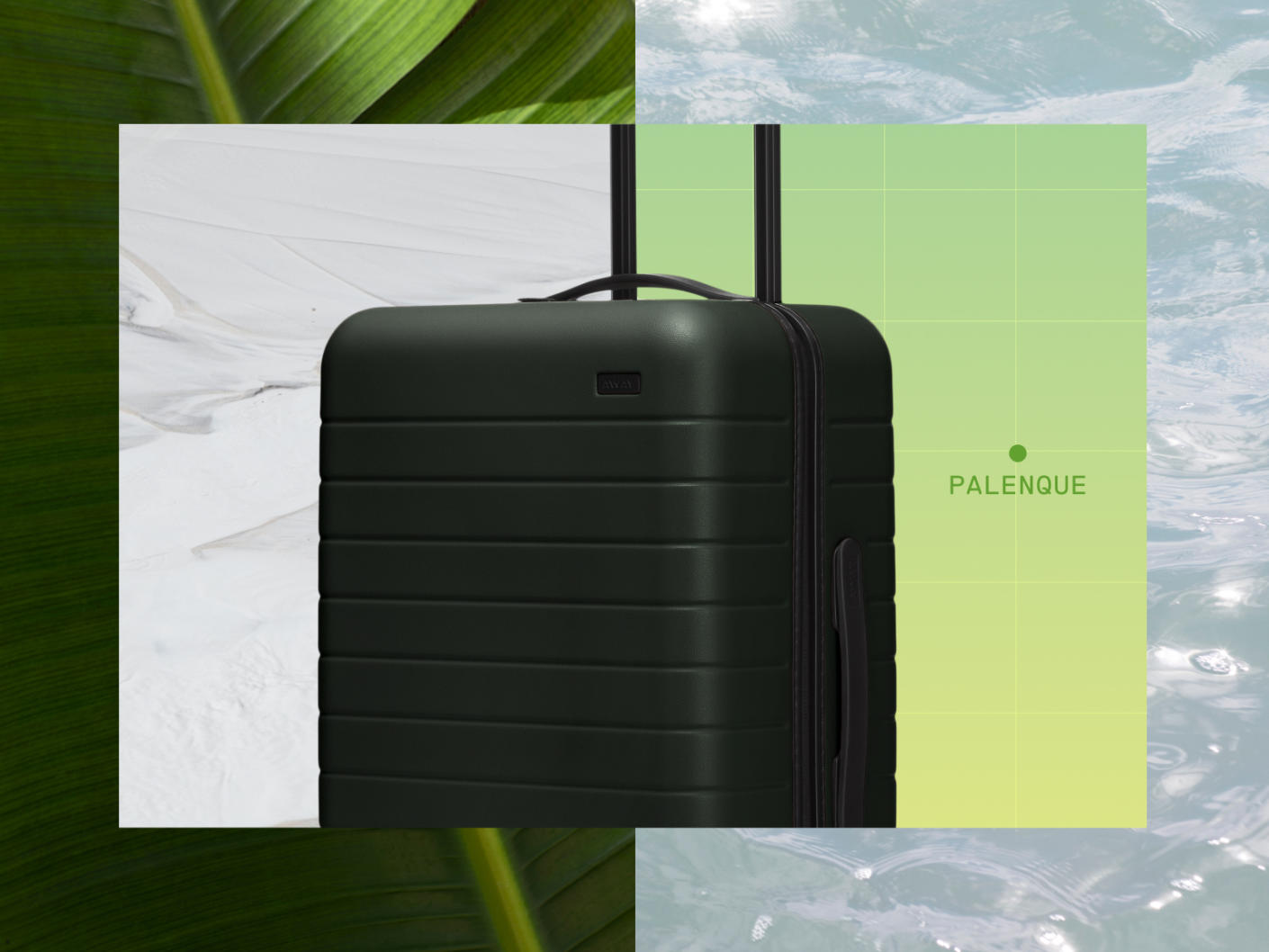 A snapshot of a green Away suitcase with animated water flow on the right and a closeup of a green leaf on the left.