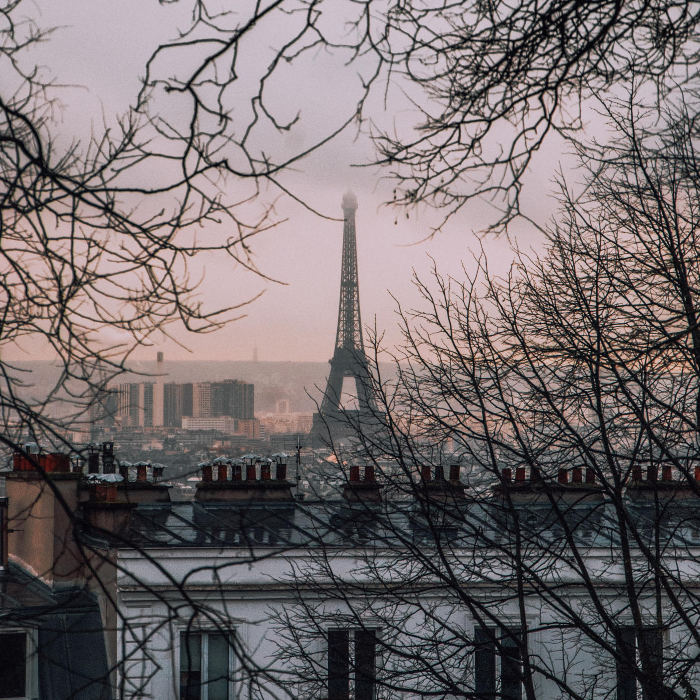 The Eiffel tower shot from a distance capturing a dusky view between foliage.