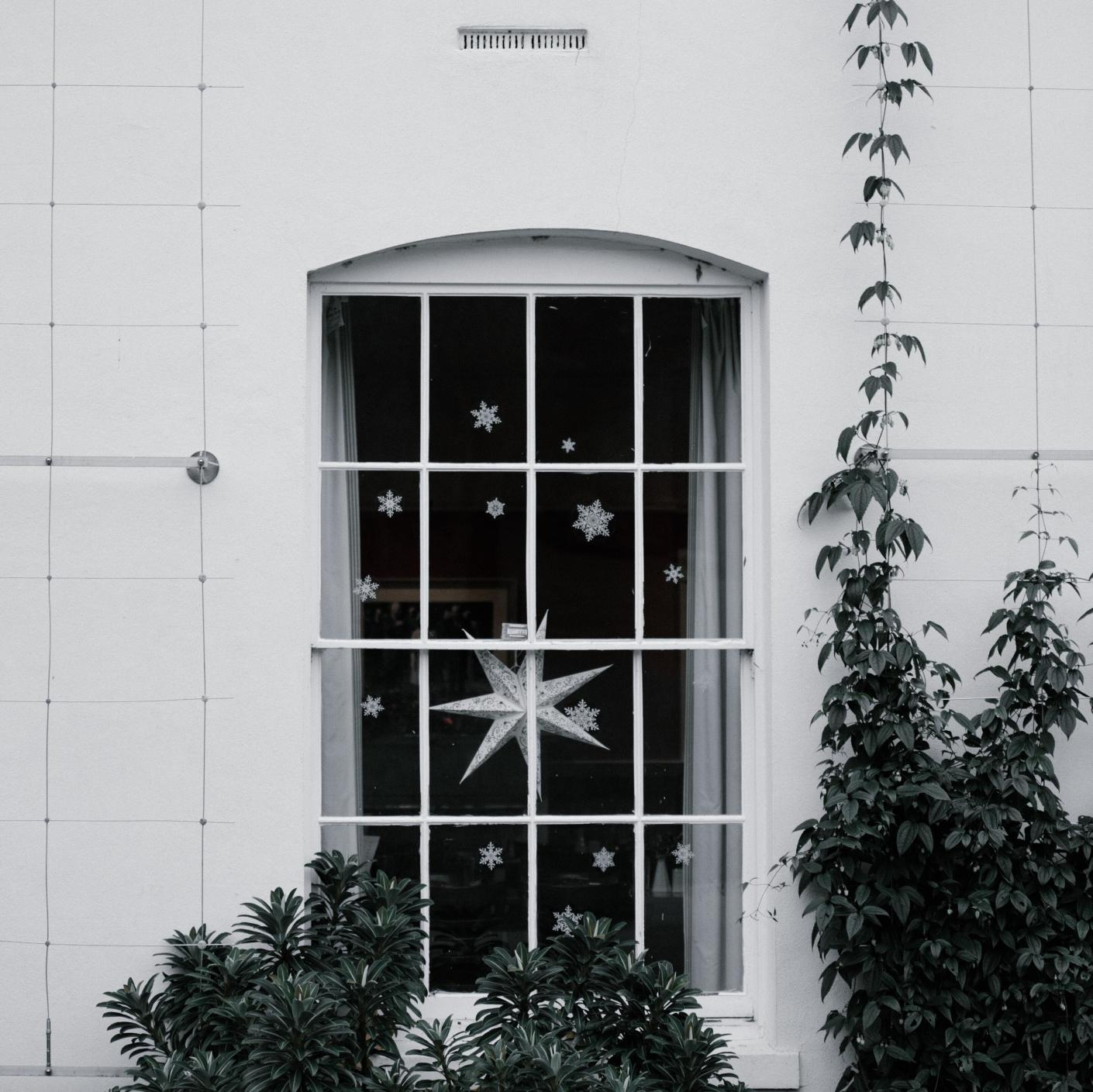 A white window decorated for the Holidays with stars with foliage in the forefront.