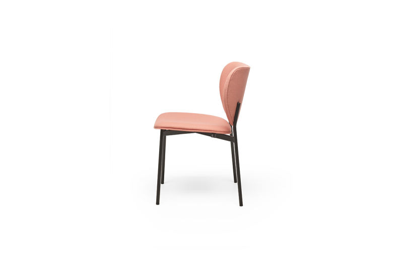 Eve dining chair 2 side