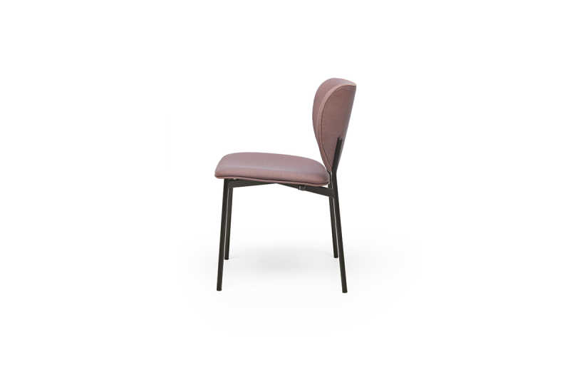 Eve dining chair 1 side