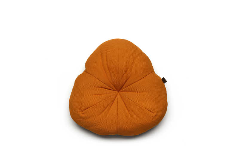 Pogo cushion rust