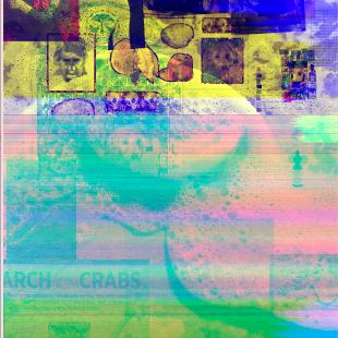 artwork image for Pic n Clip Glitch}