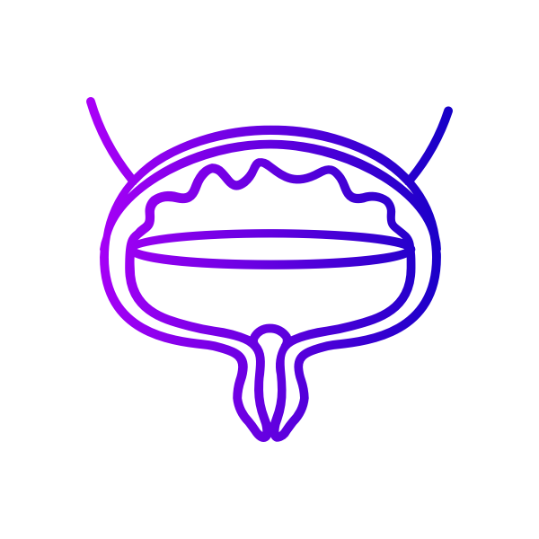 Icon for Bladder category