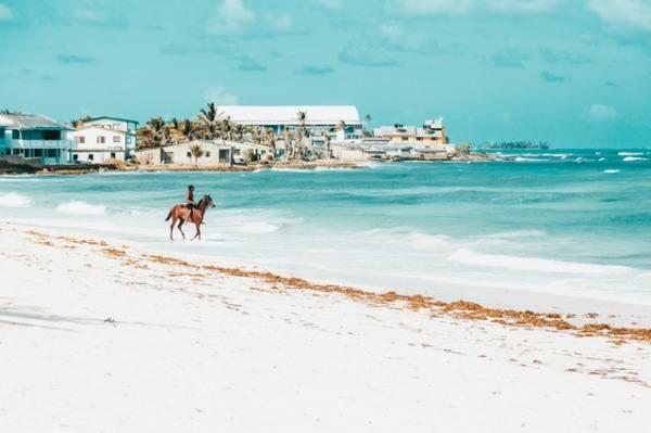 island-windjammers-horse-beach-2