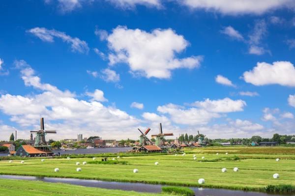 gate-1-aardy-windmills-holland-farm