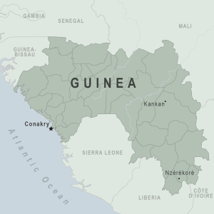 Guinea Traveler Information - Travel Advice