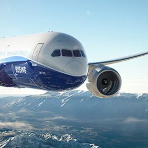 Airline-Travel-Insurance