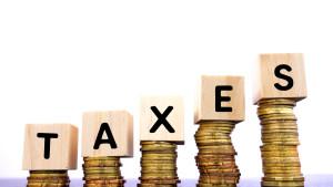 basics-on-taxes