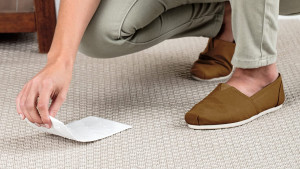 pads to soak up and remove pet stains from carpets