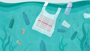 No Plastics Movement