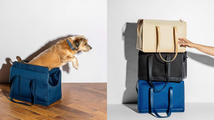 commuter carrier bag for your pet