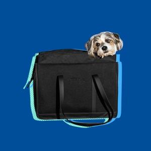 problem-solving pet products