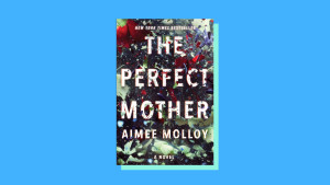 """The Perfect Mother"" by Aimee Molloy"