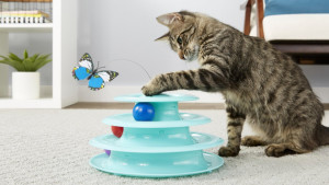 cat toy with rotating balls and butterflies they can swat at