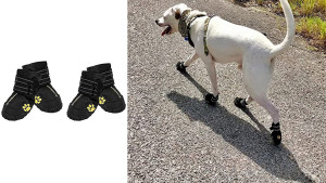waterproof dog booties for snow, mud, and salt