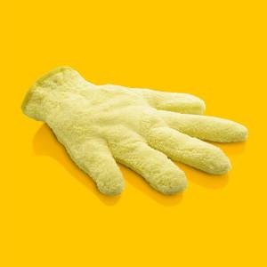 Dust Glove