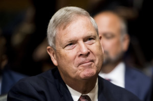 Secretary of Agriculture nominee Tom Vilsack