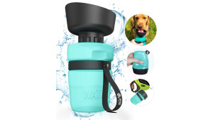 Blue Water bottle with Golden Retriever drinking out of it