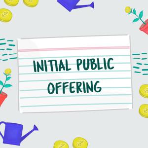 FSL Stock Market Initial Public Offering V