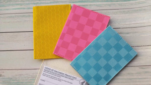 colorful vaccination card holder