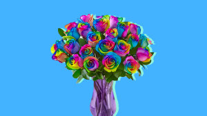 Color-enhanced roses