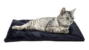 thermal cat bed that reflects their body heat back to keep them warm
