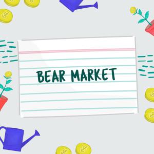FSL Stock Market Bear Market V2