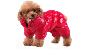 red puffer coat for small dogs
