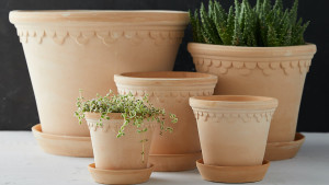 pots for plants with saucers
