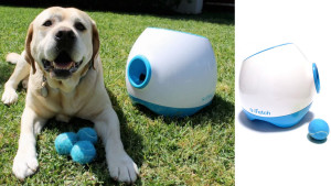 automatic ball thrower for pets who want to play fetch