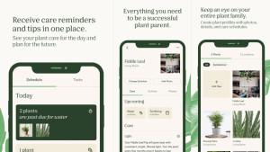 Bloomscape App