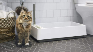 white and gray modern litter box for cats