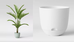 self-watering planter for your plants