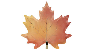 maple leaf-shaped paper plates for thanksgiving