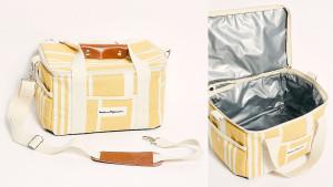 cooler bag for picnics