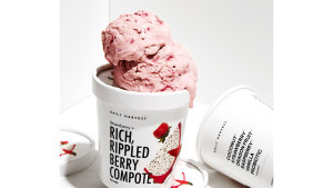Daily Harvest Strawberry + Rich, Rippled Berry Compote Vegan Ice Cream
