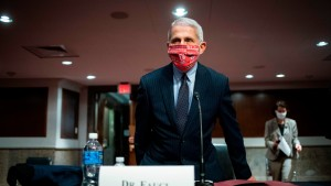Anthony Fauci, director of the National Institute of Allergy and Infectious Diseases, at Senate hearing